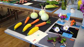 Flower and Vegetable Show 2017